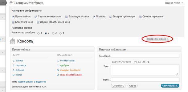 Настройка консоли в WordPress